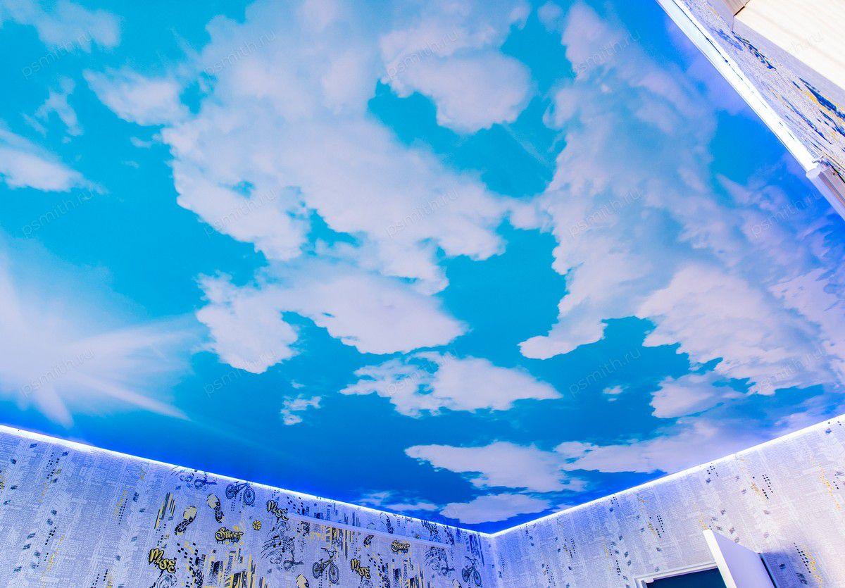 мучнистой росы фото натяжной потолок облака с плинтусом колес
